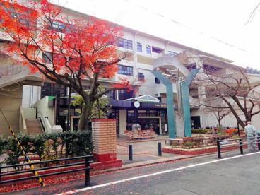 京都市立 御所南小学校の画像2