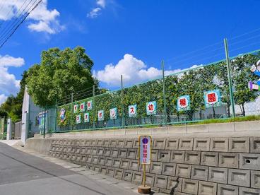 学園前ネオポリス幼稚園の画像5