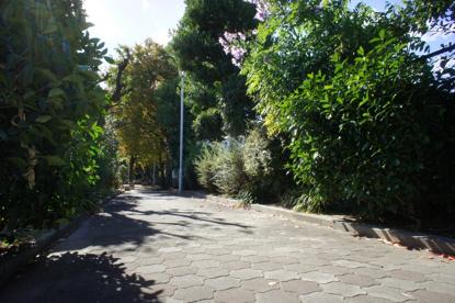 箕輪豊公園の画像1