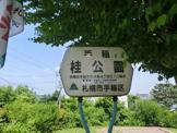 手稲桂公園