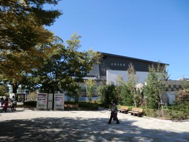 京都水族館の画像1