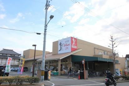 シェフカワカミ 東豊中店の画像1