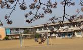 龍ケ崎市立 松葉小学校
