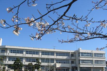 龍ケ崎市立 川原代小学校の画像1