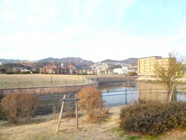 山本新池公園の画像1