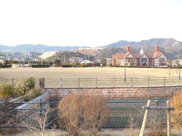 山本新池公園の画像2