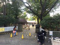 真間山幼稚園