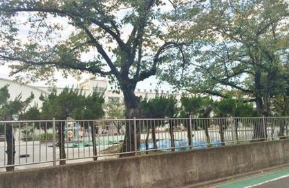足立区立 宮城小学校の画像2