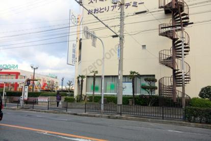 紀陽銀行 鳳支店の画像2