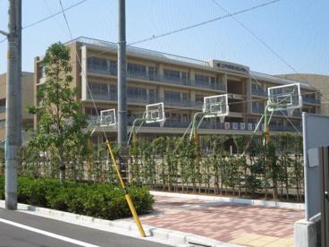 第三松江小学校の画像1