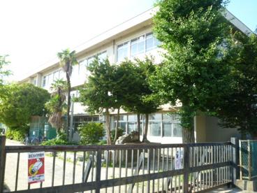 馬橋小学校の画像1