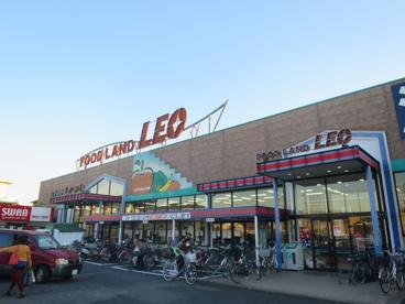 フードランドレオ誉田店の画像1