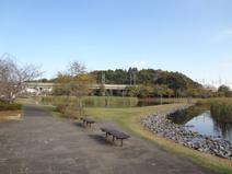 大百池公園