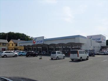 カワチ薬品 川俣店の画像1