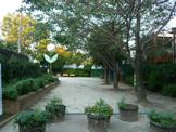 かぶとむし公園
