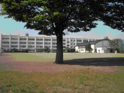 元八王子東小学校の画像1