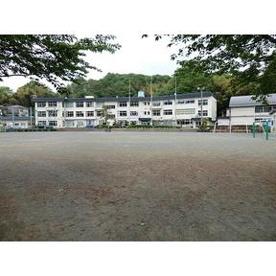 美山小学校の画像2