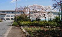 松枝小学校