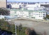 柏木小学校
