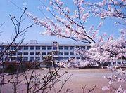 南大沢小学校の画像2