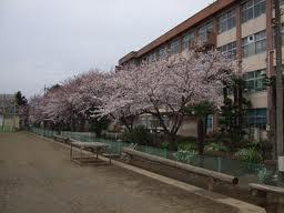 楢原中学校の画像2