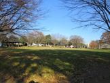 山王町公園