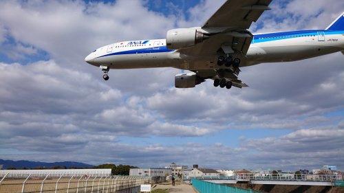 頭上注意!!飛行機が来てますよ。の画像
