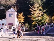 真理学園幼稚園の画像1