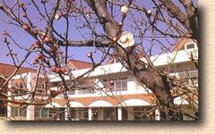 誠美保育園の画像1