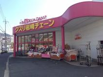 クスリ岩崎チェーン 五日市城山店