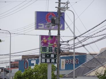 ホームセンターコーナン 豊中夕日丘店の画像1