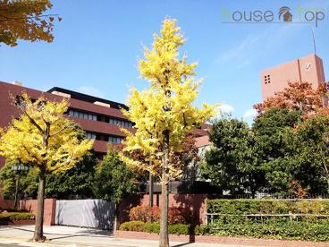私立武庫川女子大学薬学部の画像1