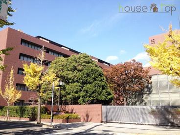 私立武庫川女子大学薬学部の画像2