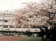 港区立 神応小学校の画像2