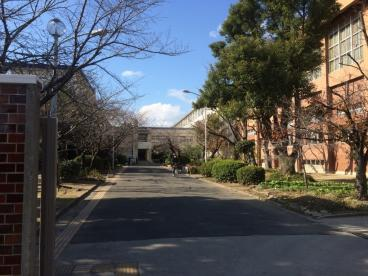 布施高等学校の画像2
