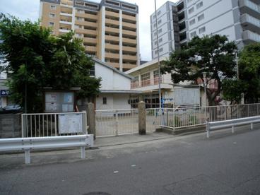錦江幼稚園の画像1