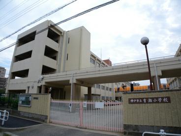 神戸市立有瀬小学校の画像1