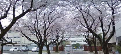 埼玉県立川越女子高等学校の画像1