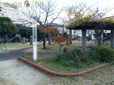 中津公園の画像1
