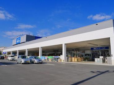 ホームセンターダイキ 富雄南店の画像3
