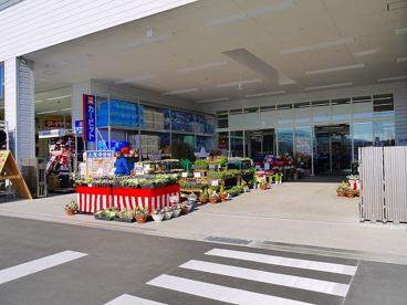 ホームセンターダイキ 富雄南店の画像4
