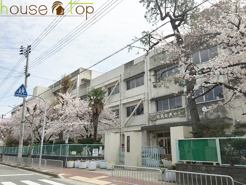 西宮市立 鳴尾小学校の画像