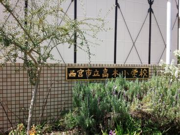 西宮市立 高木小学校の画像2
