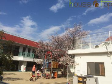 安井幼稚園の画像1