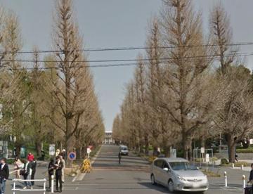 私立慶應義塾大学日吉キャンパスの画像2