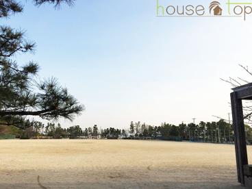 甲子園海浜公園の画像3