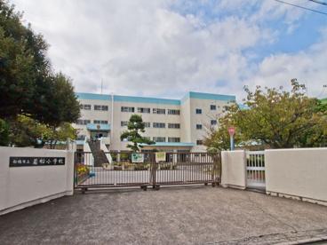 船橋市立 若松小学校の画像1