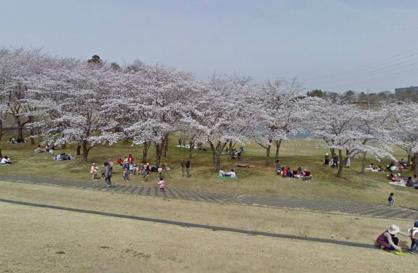 万博記念公園の画像1