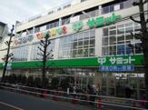 サミット(株) 志村店