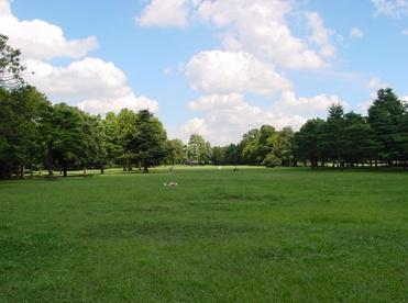 滝野川公園の画像1
